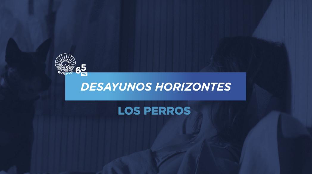 Horizontes-eko Gosariak ''Los Perros''