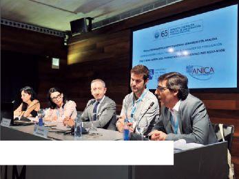 Representantes del MiBACT, ANICA, Ibermedia y el INCAA, bajo la moderación de la productora Puy Oria.